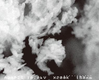 トリニティーゼット顕微鏡写真